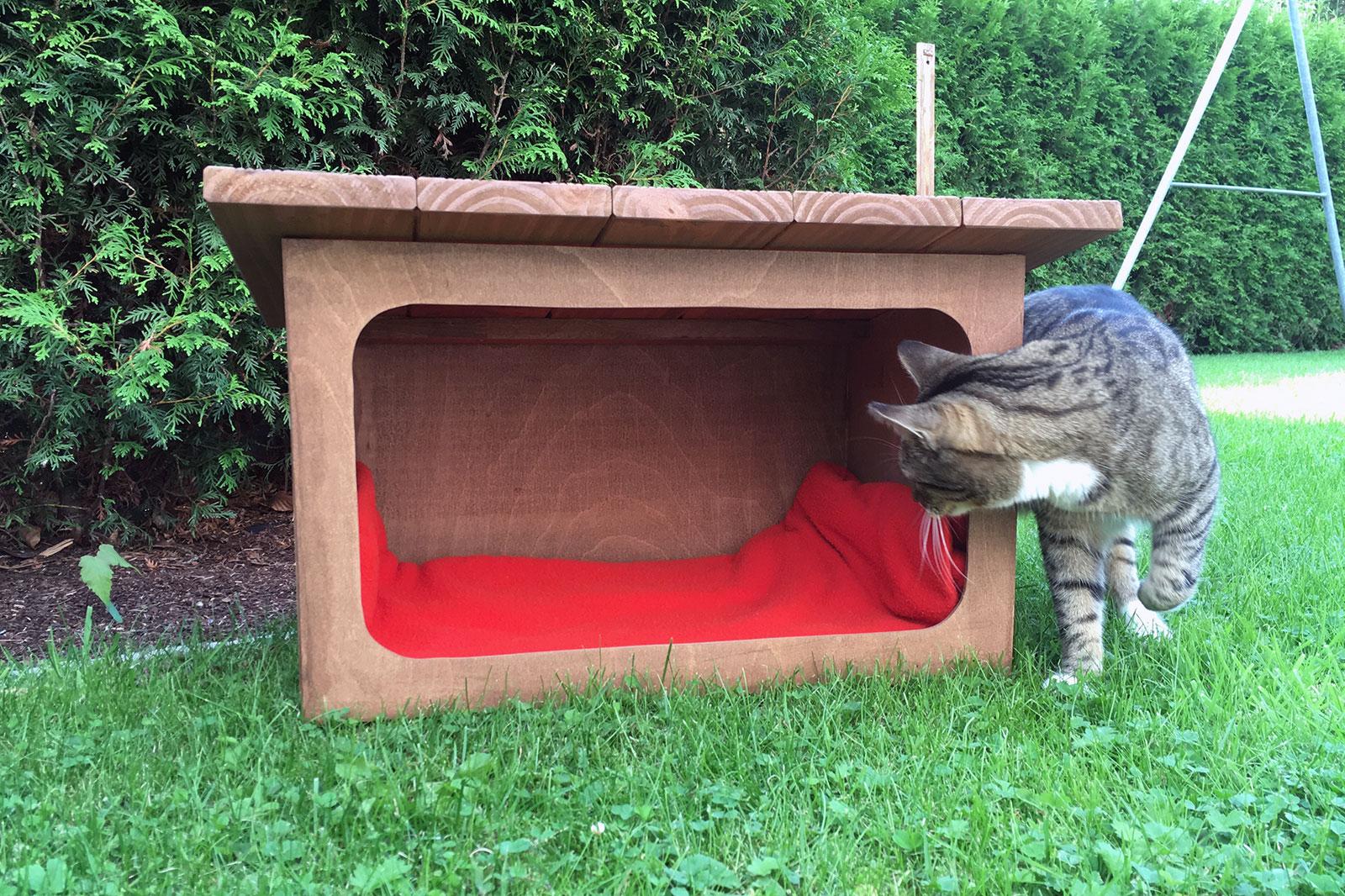 Kleines Katzenhaus aus Holz selber bauen - so geht's